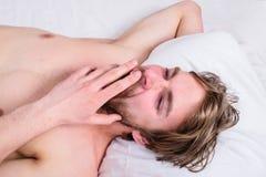 人困早晨休息 宜人的唤醒的概念 供以人员不剃须的英俊的人赤裸躯干松弛床顶视图 人 库存照片