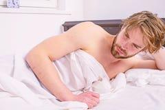 人困昏昏欲睡的不剃须的有胡子的面孔盖了有的毯子休息 人不剃须的英俊的松弛床 小睡的力量 库存图片