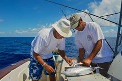 人固定金枪鱼作为细索渔的一个诱饵,海上在圣但尼附近的,雷乌尼翁冰岛 免版税库存照片