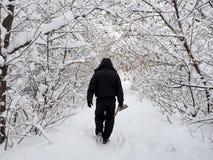 人在一个多雪的森林里 免版税库存照片