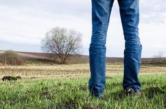 人在与绿草和偏僻的树有些遗骸的被烧的领域站立对此 免版税图库摄影
