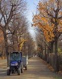 人在公园驾驶拖拉机 免版税库存图片