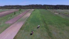 人在农场,波兰的骑乘马 影视素材