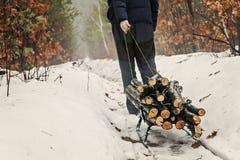 人在冬天多雪的森林里运载在一个雪撬的木头 免版税库存图片