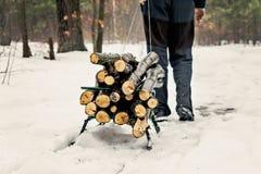 人在冬天多雪的森林里运载在一个雪撬的木头 库存照片