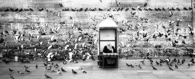 人在卖鸽子食物的报亭 免版税库存图片