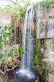 人在奥马哈动物园里做了瀑布 库存照片