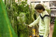 年轻人在市场上选择圣诞树 免版税库存照片
