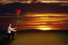 人在日落前拿着一朵玫瑰 库存图片