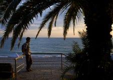 人在日落期间的棕榈树下 免版税库存图片