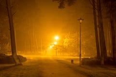 人在晚上单独走在一个郊区公园 免版税库存照片