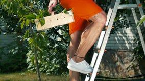 人在有樱桃篮子的庭院里攀登台阶  股票录像