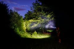 人在森林里在晚上 免版税库存图片