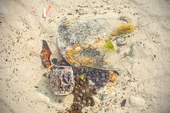 人在浅水区,海滩的垃圾污染的 库存图片