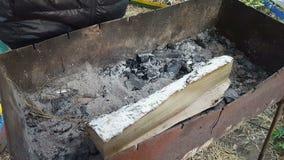人在火盆投入木柴 股票视频