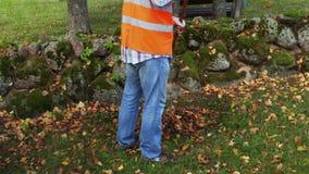 人在石墙篱芭附近收集秋叶 股票录像
