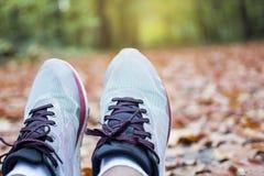 人在秋天的赛跑者脚在地面上离开在森林在秋天季节 免版税库存图片