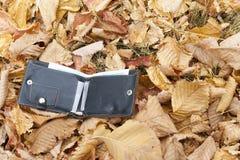 人在黄色秋叶的` s钱包 在叶子的公园是有金钱的一个钱包 钱包丢失找到男性伙伴 免版税库存照片