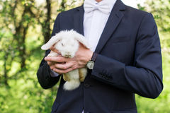 年轻人在他的手上修饰拿着一只白色逗人喜爱的兔子在绿色背景,夏令时 免版税库存图片