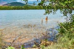 人在Kampot柬埔寨钓鱼在有山的河在背景中 免版税库存图片