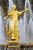 人在VDNKH公园的友谊喷泉在莫斯科 库存照片