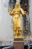 人在VDNKH公园的友谊喷泉在莫斯科 免版税库存图片