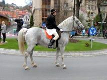 年轻人坐在街市布拉索夫的马 免版税库存图片