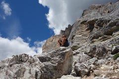 人坐Pelmo峰顶岩石 库存照片