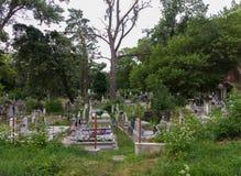 人埋葬地方有灰色墓碑和石碑的 有绿色树到处 免版税库存照片