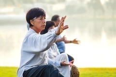 人实践太极拳川石在公园 免版税图库摄影