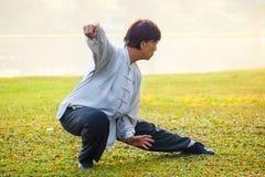 人实践太极拳川石在公园 免版税库存照片