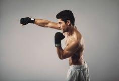 年轻人实践的影子拳击在灰色背景 免版税库存照片