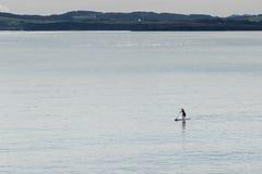 人实践的海浪paddel 免版税库存照片