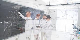 人实验研究在实验室 库存图片
