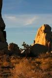人岩石 免版税图库摄影