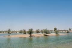 人工湖的小海岛绿洲的在树和灌木包围的沙漠 库存图片