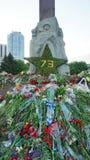 人带来的花给荣耀的纪念碑在法西斯主义, 5月9日的胜利天 免版税库存照片
