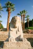 人带头的埃及狮身人面象 库存照片