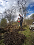 年轻人开掘地球床的一把铁锹 早期的春天 免版税图库摄影