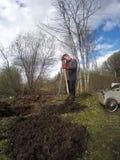 年轻人开掘地球床的一把铁锹 早期的春天 免版税库存图片
