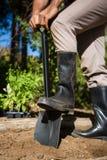 人开掘的土壤的低部分与铁锹的在庭院里 免版税库存照片
