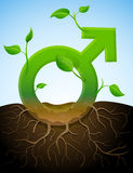 象植物的生长男性标志有叶子和roo的 免版税图库摄影