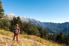 人徒步旅行者敬佩范围山环境美化 库存图片