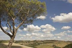 令人惊讶的托斯卡纳风景 免版税库存照片