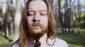 人战士,有长发的北欧海盗一个胡子和猪尾胡子身分在有我的眼睛的森林关闭了 影视素材