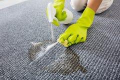 人手喷洒的洗涤剂特写镜头在地毯的 库存图片