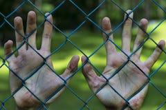 人手在监狱 监禁 贫穷,遭受 免版税库存图片