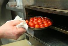 人拉出烤箱被烘烤的蕃茄 库存图片