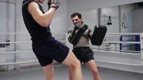 人拳击手由腿的脚踢拳击垫在与教练的个人训练 战斗机踢在拳击台的垫的训练命中 股票录像
