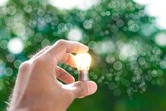 人拿着与太阳的电灯泡自白天,与树bokeh背景使用墙纸或背景想法工作的事务的w 免版税库存图片